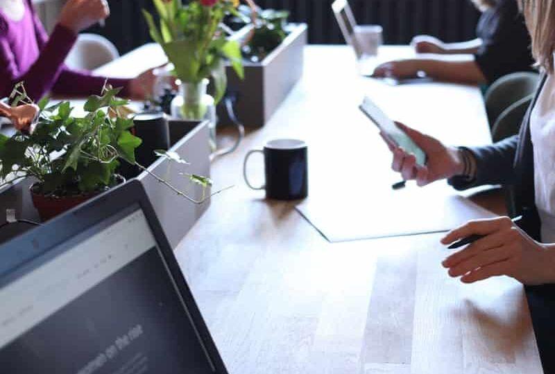 הסכם ממון ⚖️ נכסי קריירה ומוניטין